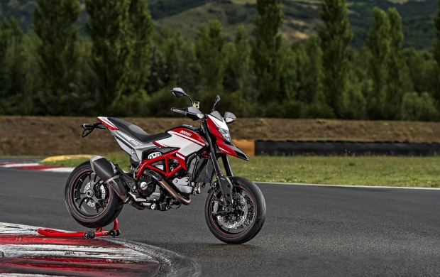Ducati Hypermotard SP 2014 (click to view)