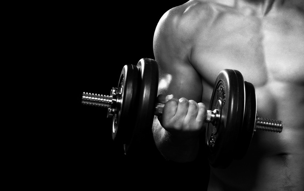 Dumbbell Arms Fitness (click to view)