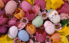 Easter Eggs And Beautiful Tulips