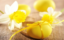 Easter Eggs Narcissus Flowers