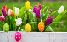Easter Eggs On Flowers Background