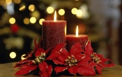 Elegant Red Candles
