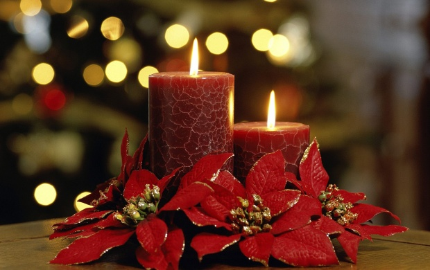Elegant Red Candles (click to view)