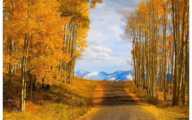 Empty Autumn Road (click to view)