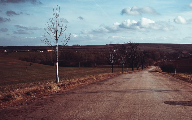 Empty Country Road (click to view)