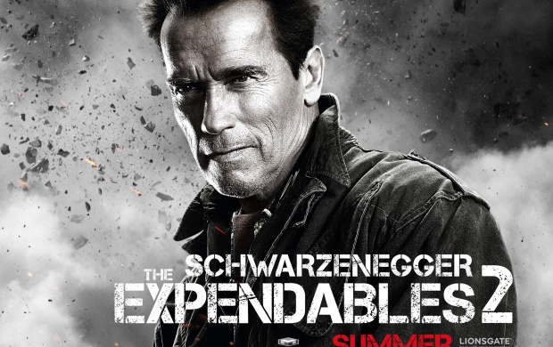 Expendables 2 Schwarzenegger (click to view)