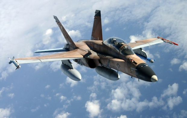 F A 18 Hornet (click to view)
