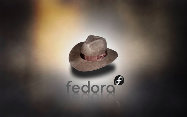 Fedora Hat (click to view)