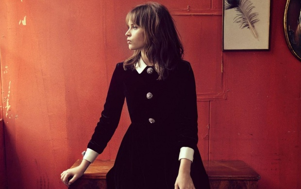 Felicity Jones The Hollywood Reporter (click to view)