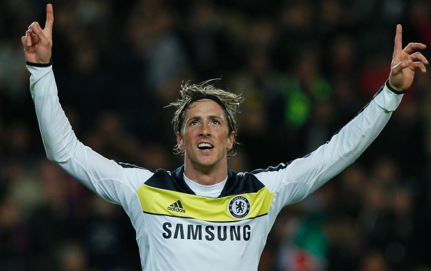 Fernando Torres Happy (click to view)