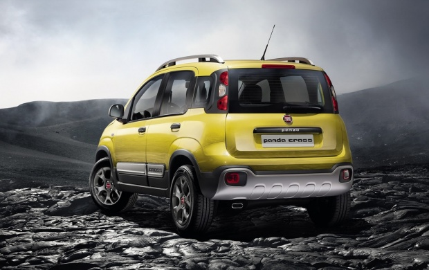 Fiat Panda Cross 2014 (click to view)