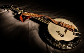 Five-String Banjo