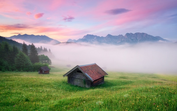 Fog Coming on Green Meadow (click to view)