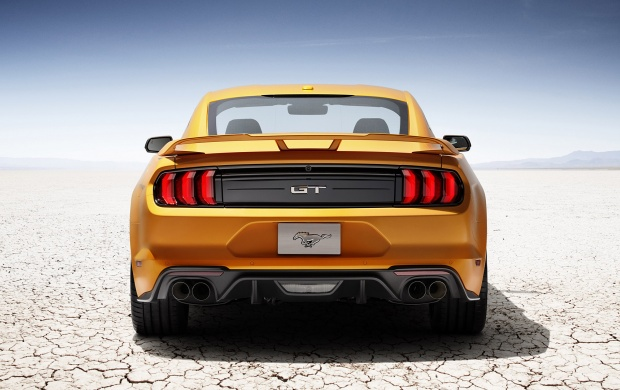 Ford Mustang GT Rear Look (click to view)