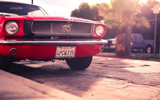 Ford Mustang Red Car (click to view)