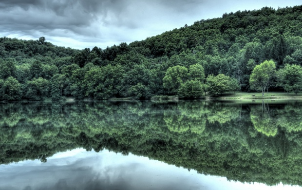 Forest Reflection in a Lake (click to view)
