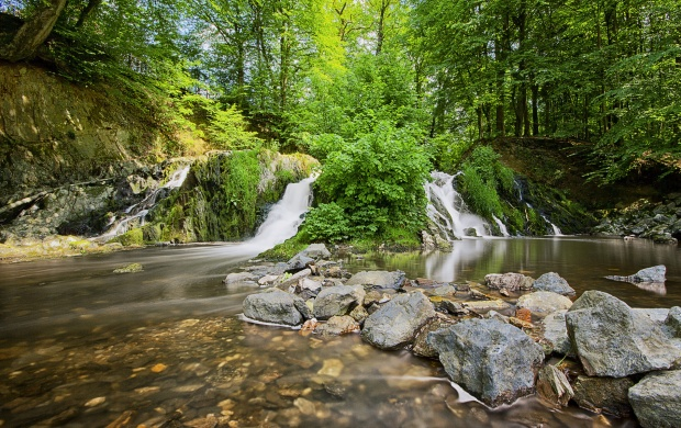 Forest Waterfall And Stones (click to view)