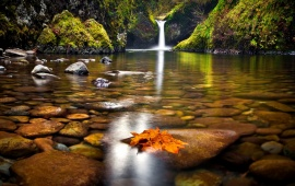 Forest Waterfall Lake Stones Autumn And Leaves