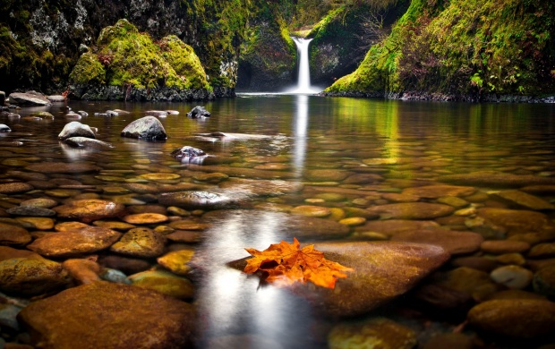 Forest Waterfall Lake Stones Autumn And Leaves (click to view)