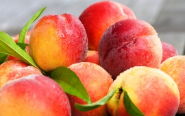 Fresh Peaches Fruit