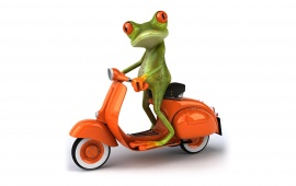 Frog Driving Scooter