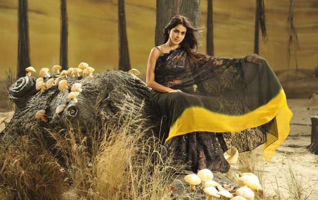Genelia Latest Saree (click to view)