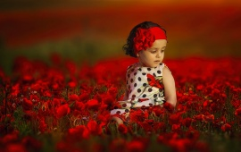 Girl At Poppy Field