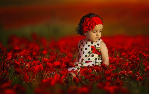 Girl At Poppy Field (click to view)
