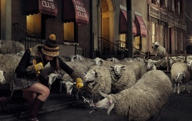 Girl Punching Some Sheep
