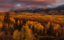 Golden Glow Autumn Trees Mountains
