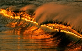 Golden Wave at Sunset, Mexico