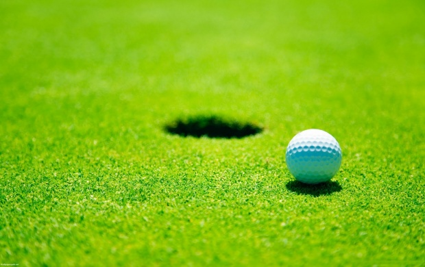 Golf Ball Hole Green (click to view)