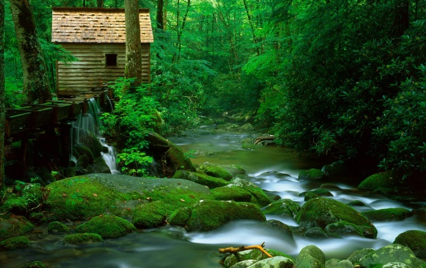 Great Smoky Mountains (click to view)
