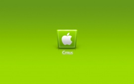 Green Apple IPhone 5