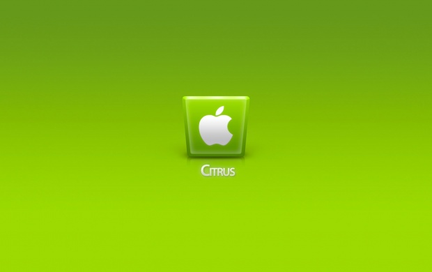Green Apple IPhone 5 (click to view)
