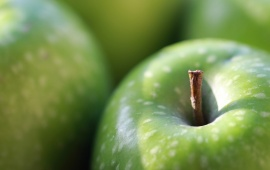 Green Apple On White Circle