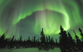 Green Aurora Borealis Light