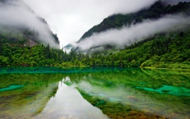 Green Color Lake And Fog