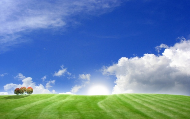 Green Field and Blue Sky (click to view)