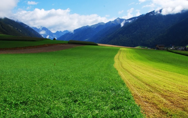 Green Fields Between the Mountains (click to view)