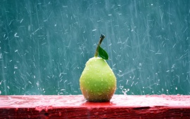 Green Pear In The Rain