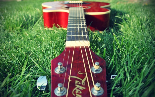 Guitar On Grass (click to view)