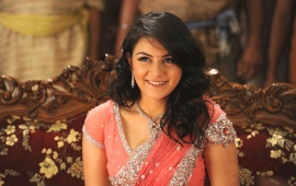 Hansika Motwani Beautiful Saree
