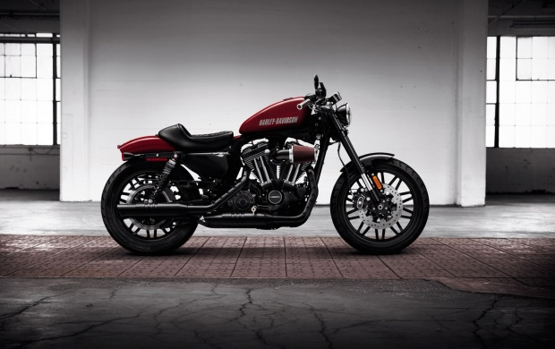 Harley-Davidson Roadster 2016 (click to view)