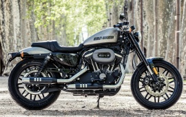 Harley-Davidson Roadster Beauty 2016
