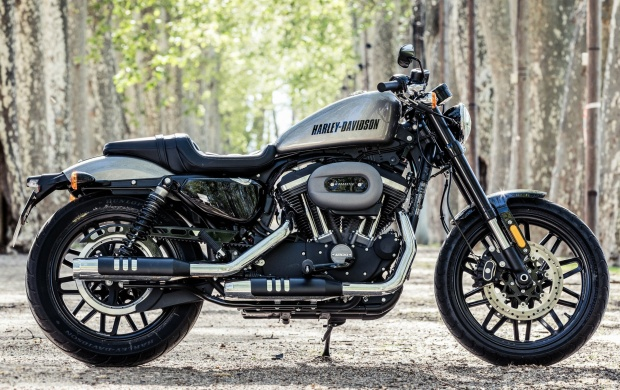 Harley-Davidson Roadster Beauty 2016 (click to view)