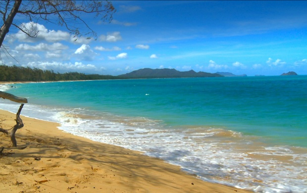 Hawaii Beach (click to view)