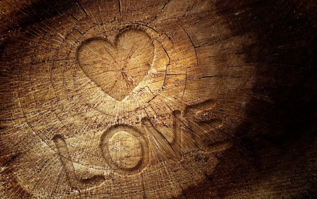 Heart On A Tree Stump (click to view)