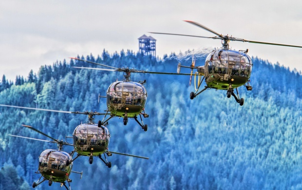 Helicopters Flight (click to view)