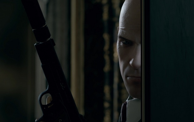 Hitman 2015 Video Game (click to view)